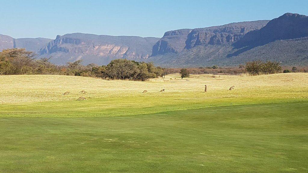 golf-afrique-du-sud