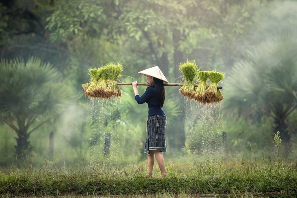 visiter vietnam