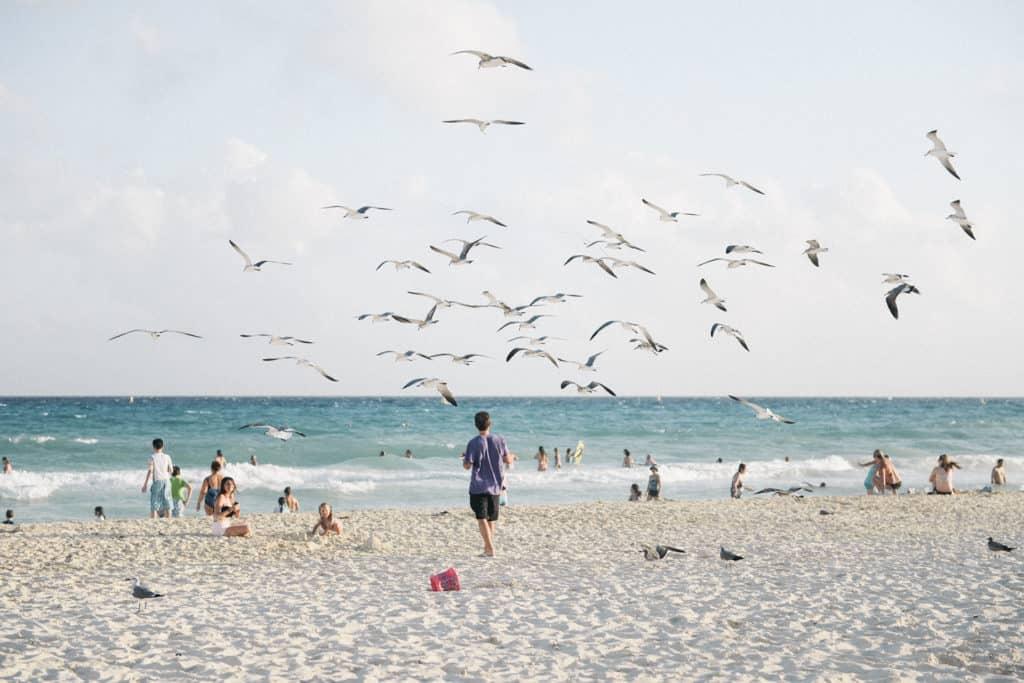 decouvrir playa del carmen
