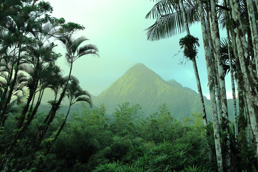montagne pelee