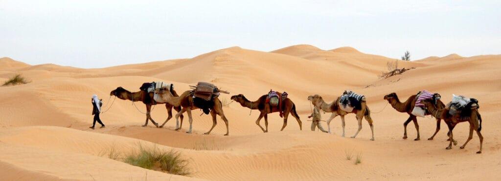 plus beaux endroits tunisie